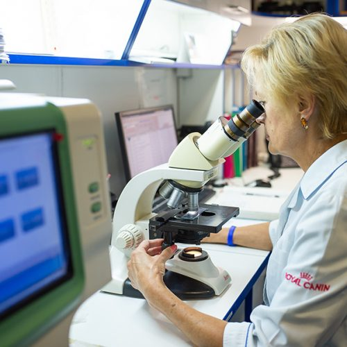 лаборатория для животных киев